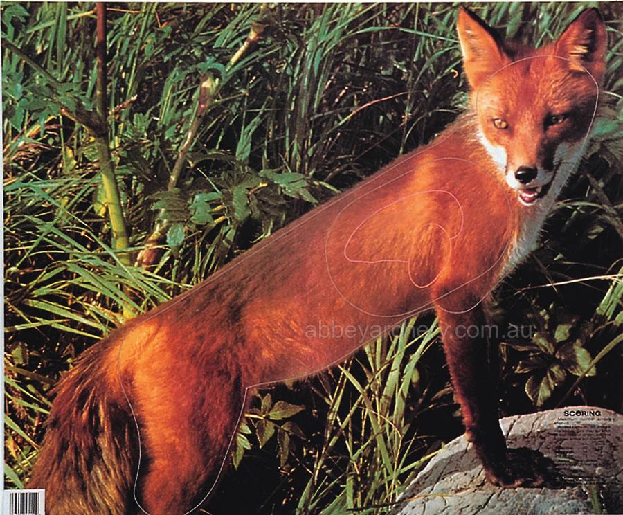 Fox Animal Target Face Photograph